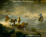 Advertise jobs, facilities, contract manufacturing, events and your company's services through MontanaLifeScience.com.